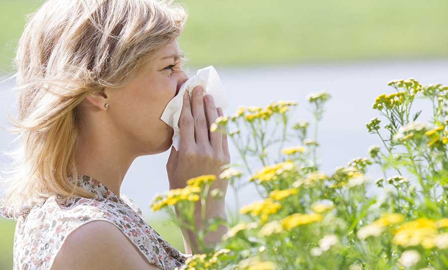 Seasonal Allergy Information and Treatments for Residents and Visitors to the Yampa Valley and Steamboat Area